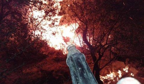 Incendio doloso, brucia ancora Recommone