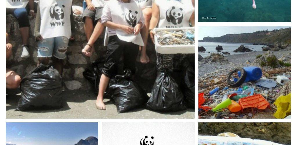WWF: questa estate la guerra ai rifiuti di plastica entra nel vivo!