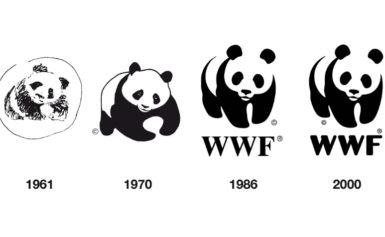 Meta: il responsabile del 2° dipartimento chiede al WWF di lasciare la sede entro il primo Luglio – il Sindaco Giuseppe Tito garantisce che si impegnera'  per far rimanere l'associazione del Panda nel suo comune