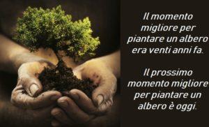 21 novembre, Festa dell'Albero:  diamo un soffio di aria pulita alle città … piantiamo nuovi alberi!