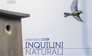 """""""INQUILINI … NATURALI"""", IN DISTRIBUZIONE Il CALENDARIO 2019 DEL WWF TERRE DEL TIRRENO"""