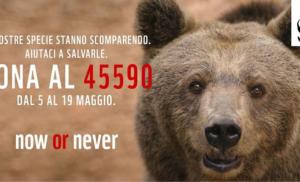 SANT'AGNELLO: DOMENICA 19 GIORNATA NAZIONALE DELLE OASI WWF