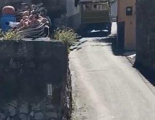 """SORRENTO, VIA CALA DI PUOLO: UN CALESSE """"SBIZZARRITO"""""""